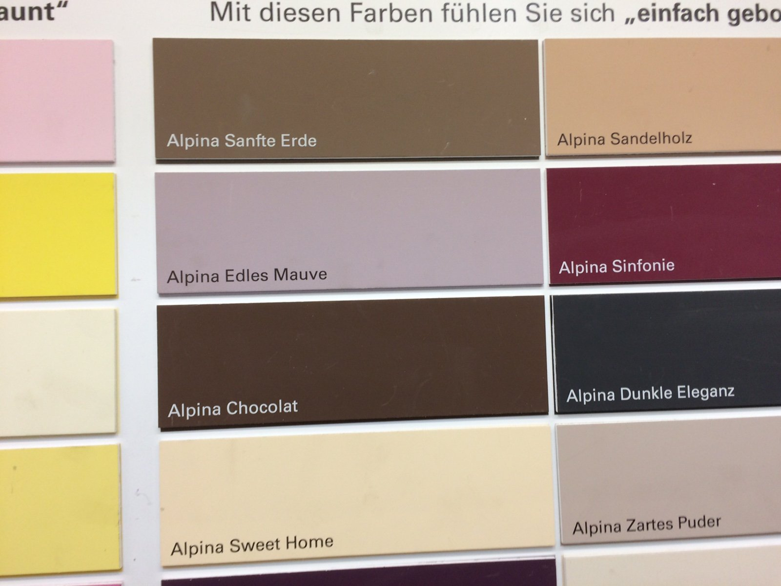 Farbauswahl im Baumarkt